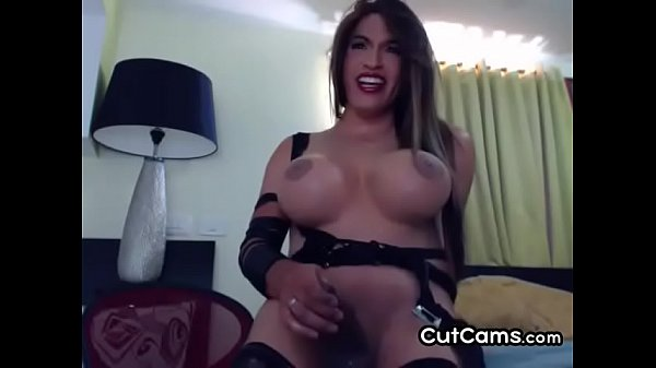 Shemales, Busty amateur