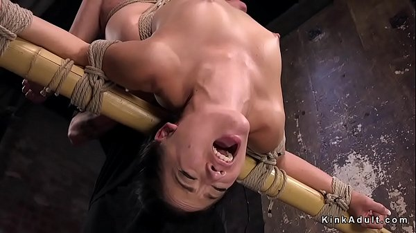 Hogtied, Anal toy, Extreme anal, Fuck anal, Anal toying, Toy anal