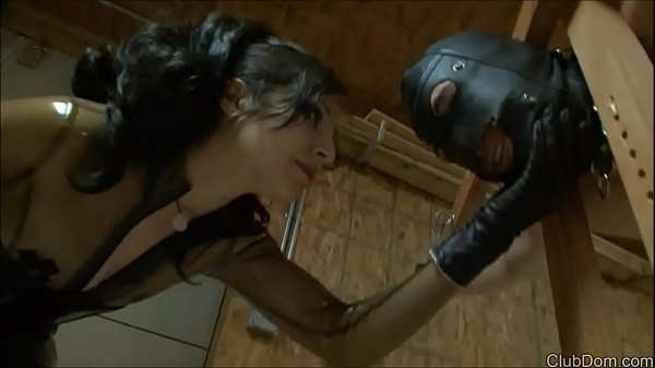Caning, Mistress, Mistress t, Caned, Mistress caning, Mistresses